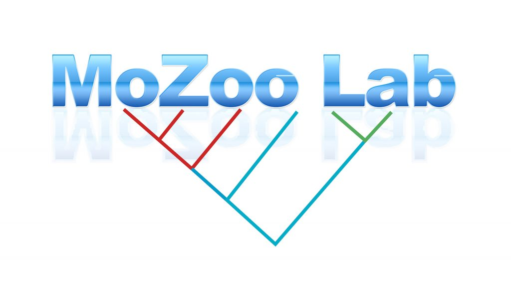 Welcome to the MoZoo Lab Blog